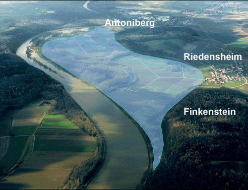 Flutpolder Riedesheim